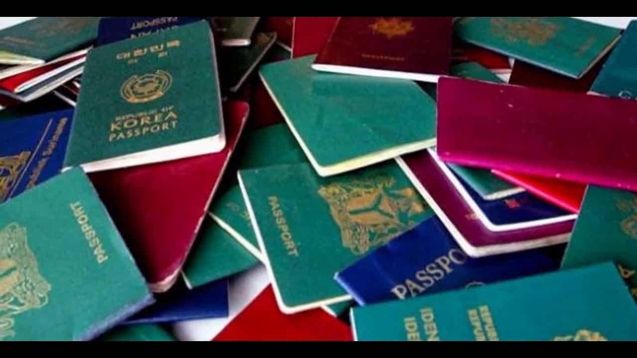 Fake degrees and passports