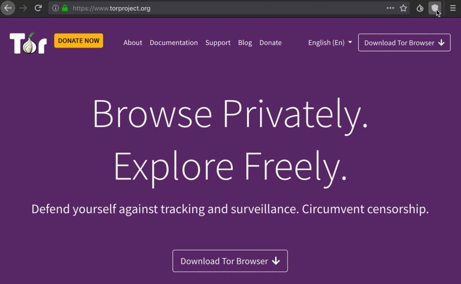 Скачать tor browser bundle for windows hyrda вход как поменять ip в tor browser gydra